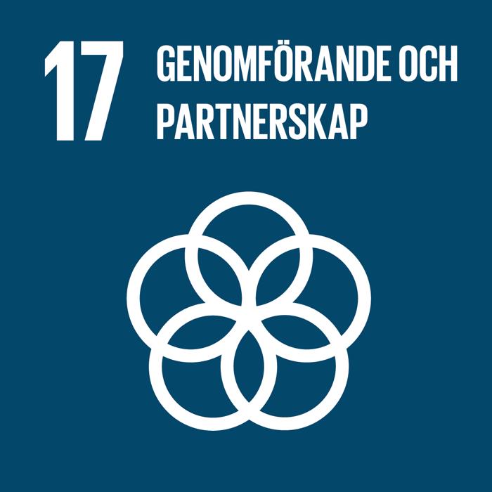 17_genomforande_och_partnerskap