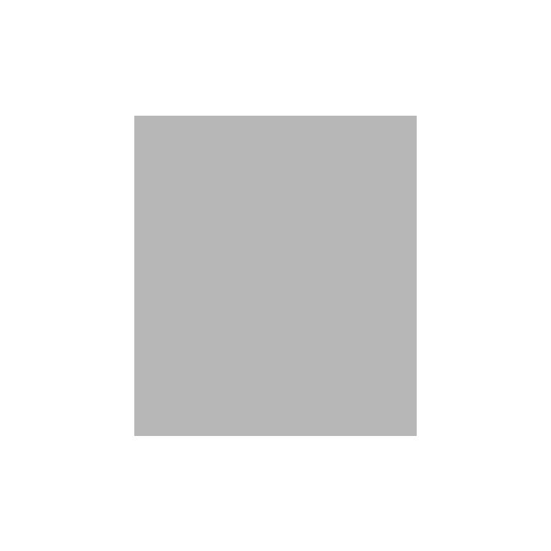 statistiska_centralbyran_logo